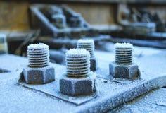 Болты и гайки Стоковое Фото