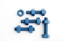 Болт и гайка ксилана в сини покрыли с PTFE Стоковые Изображения