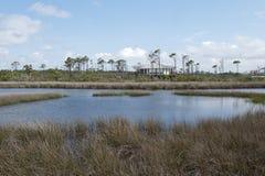 Большая лагуна на большом парке штата лагуны в Pensaocla, Флориде Стоковое Изображение