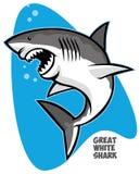 большая белизна акулы бесплатная иллюстрация