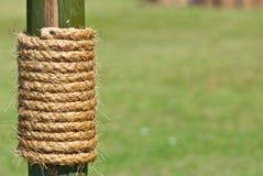 Большая веревочка на бамбуковом дереве с зеленой травой Стоковая Фотография RF