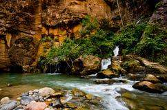 Большая весна в узких частях на национальном парке Сиона. Стоковые Фотографии RF