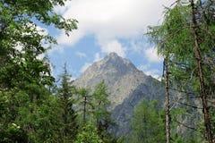 Большая гора в Словакии Стоковые Изображения