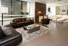 Большая гостиная стоковое изображение rf