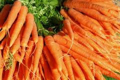 Большая группа в составе моркови стоковые фотографии rf