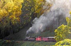 Большая езда поезда железной дороги закоптелых гор Стоковое Фото
