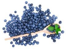 Большая деревянная ложка при органические, сладостные голубики и листья свежей мяты, изолированные на белой предпосылке скопируйт Стоковое Фото