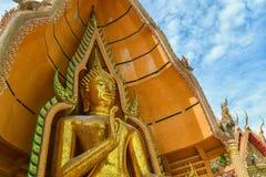 Большая земля Scape Будды Стоковое Изображение