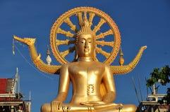 Большая золотая статуя Будды Стоковые Изображения RF