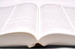 большая книга открытая Стоковые Изображения RF