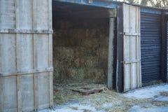 Большая конюшня лошади Стоковые Фотографии RF