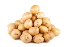 Большая куча сырой зрелой картошки стоковое фото