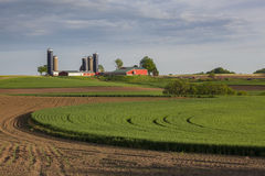 Большая молочная ферма стоковые фото