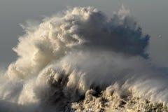 Большая океанская волна стоковые изображения
