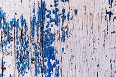 большая древесина вала текстуры Стоковые Фото
