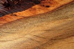 большая древесина вала текстуры Стоковые Изображения
