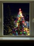 Большая рождественская елка вне окна Стоковые Изображения