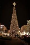 Большая рождественская елка, загоренная на ноче outdoors Стоковое Изображение