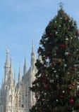 Большая рождественская елка и собор милана Стоковые Фото