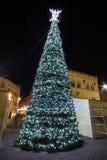 Большая рождественская елка, Перудж Стоковая Фотография RF
