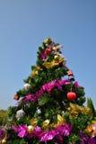 большая рождественская елка Стоковое Фото