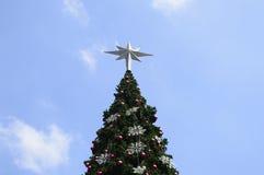 Большая рождественская елка, Стоковые Фото