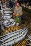 Большая рыба в МЬЯНМЕ - БИРМЕ Стоковое фото RF