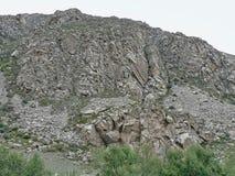 Большая скалистая стена с некоторыми заводами на дне Стоковые Фото