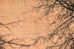 Большая старая кирпичная стена Стоковое Изображение RF