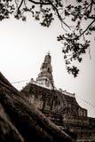Большая старая пагода Стоковые Изображения RF