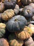 Большая тыква в vegetable рынке Стоковое Фото