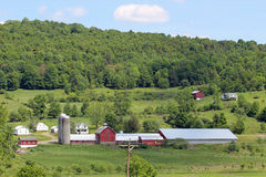 Большая ферма Стоковые Фото