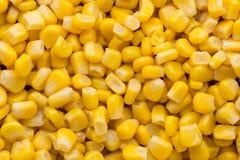 Большая часть желтой текстуры зерен мозоли Стоковая Фотография
