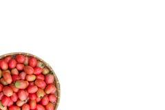 Большая часть зрея томата Стоковая Фотография RF