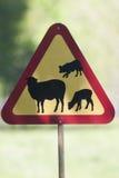 больше моего знака портфолио подписывает предупреждение Стоковые Изображения RF