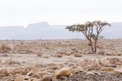 большие ландшафты штольни пустыни города безжизненные больше моей другой работы изменения вала захода солнца панорамы предыдущей Стоковая Фотография
