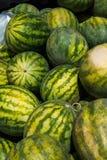 Большие арбузы на рынке местных фермеров Стоковая Фотография