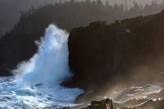 Большие волны ломая на утесах Стоковые Фото