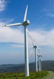 большие голубые облака плавают вдоль побережья ветер белизны погоды неба Ирландии восточной фермы славный Стоковое фото RF