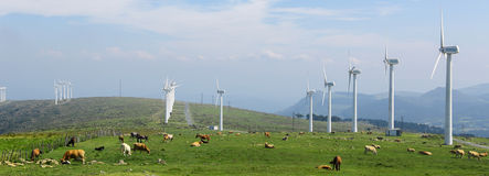 большие голубые облака плавают вдоль побережья ветер белизны погоды неба Ирландии восточной фермы славный Стоковые Изображения