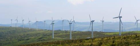 большие голубые облака плавают вдоль побережья ветер белизны погоды неба Ирландии восточной фермы славный Стоковое Изображение