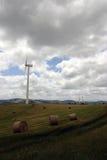 большие голубые облака плавают вдоль побережья ветер белизны погоды неба Ирландии восточной фермы славный Стоковые Фотографии RF