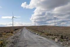 большие голубые облака плавают вдоль побережья ветер белизны погоды неба Ирландии восточной фермы славный Стоковые Фото