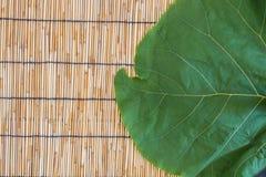 Большие лист на бамбуковой слепой предпосылке Стоковое Фото