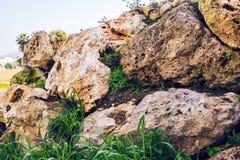 Большие камни в зеленой траве символ доверия и безмятежности Стоковые Изображения