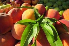 Большие персики на рынке Стоковые Фотографии RF