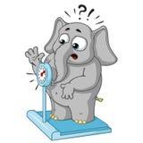 Большие персонажи из мультфильма вектора собрания слонов на изолированной предпосылке Весить на масштабах Иллюстрация вектора