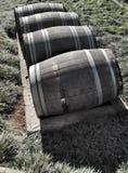Большие покинутые vats вина на grss Стоковое Изображение RF