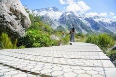 Большие прогулки Новой Зеландии Стоковая Фотография