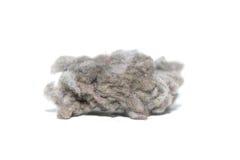 Большие пыль и волосы Стоковое Изображение